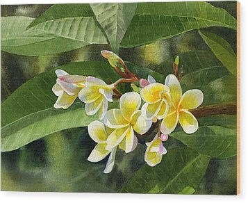 Plumeria Blossoms Wood Print by Sharon Freeman