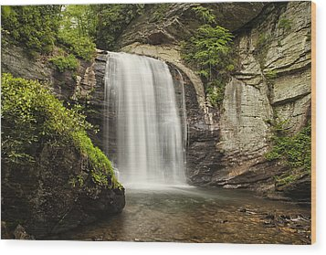 Plunging Waterfall Wood Print by Andrew Soundarajan