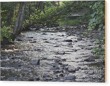 Poconos Gentle Stream Wood Print by John Telfer