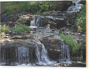 Poconos Waterfall Stream Wood Print by John Telfer