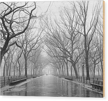 New York City - Poets Walk Central Park Wood Print