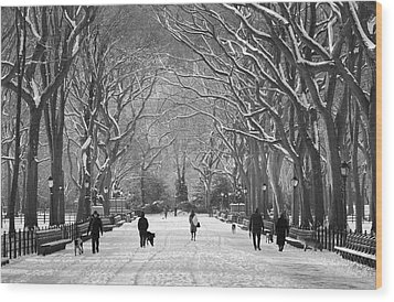 New York City - Poets Walk Winter Wood Print by Dave Beckerman