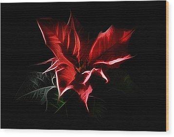 Poinsettia - Christmas Flower Wood Print by Gynt