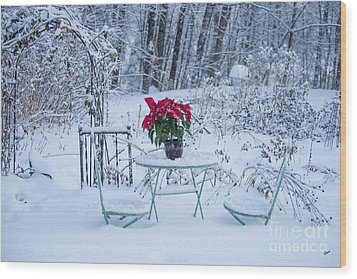 Poinsettia In The Snow Wood Print by Alana Ranney