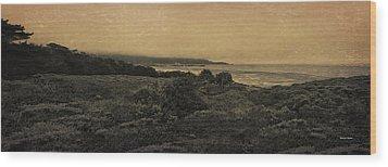 Point Lobos - An Antique Take Wood Print by Angela A Stanton