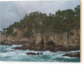 Point Lobos Coastal View Wood Print