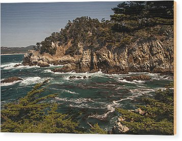 Wood Print featuring the photograph Point Lobos by Lee Kirchhevel