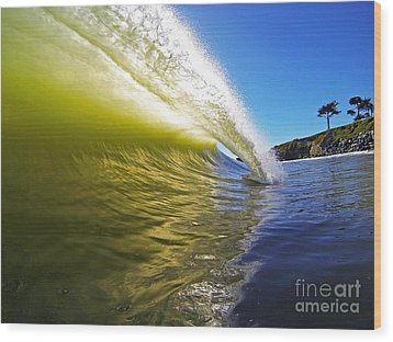 Point Of Contact Wood Print by Paul Topp