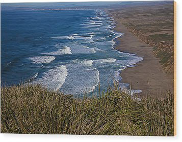 Point Reyes Beach Seashore Wood Print by Garry Gay