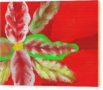 Pointsettia Wood Print by Doris Culverhouse