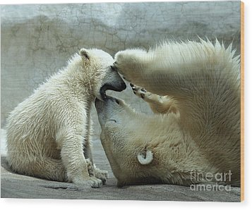 Polar Bear Mom And Cub Wood Print