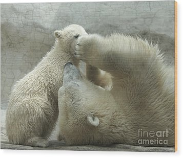 Polar Bears 4 Wood Print