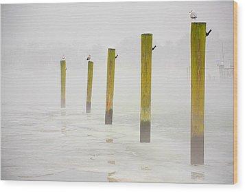 Poles Wood Print by Karol Livote