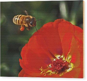 Pollination Wood Print by Rona Black
