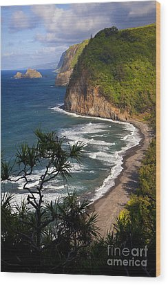 Pololu Wood Print by Aaron Whittemore