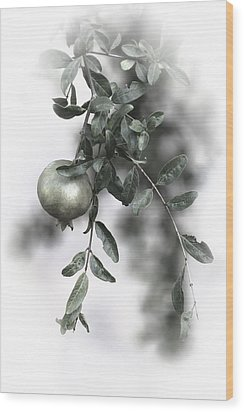 Pomegranate Wood Print by Goyo Ambrosio