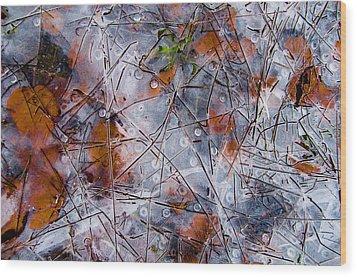 Pond Ice Art Wood Print