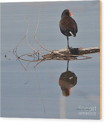 Wood Print featuring the photograph Pond Reflection by Debby Pueschel