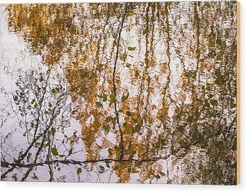 Pond Reflections #3 Wood Print