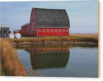 Pond Reflections Wood Print by Larry Trupp