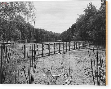 Pond Trail Adventures Wood Print by Jennifer L Washington