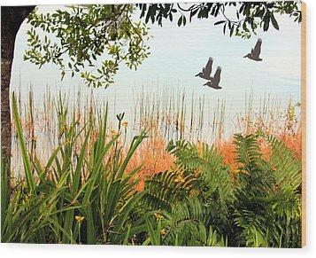 Pond View Wood Print by Rosalie Scanlon