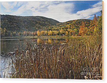 Pond With Autumn Foliage  Wood Print by George Oze