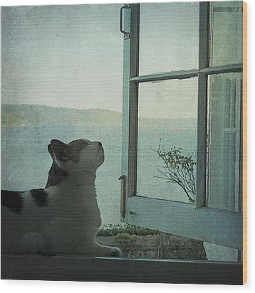 Pondering Wood Print by Sally Banfill