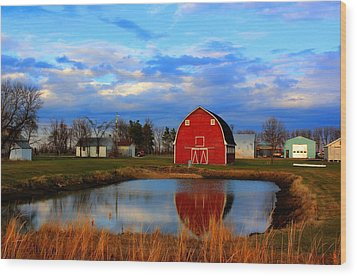 Pondside Farms Wood Print by Larry Trupp
