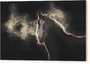 Pony Wood Print by Marc Huebner
