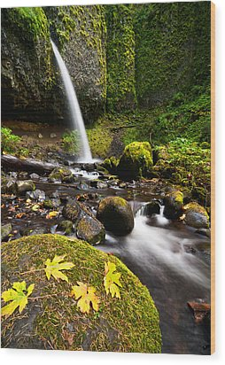 Ponytail Falls Wood Print