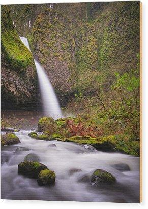 Wood Print featuring the photograph Ponytail Falls by Brian Bonham