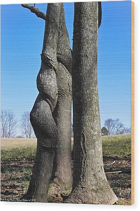 Wood Print featuring the photograph Poor Twisted Tree by Nick Kirby