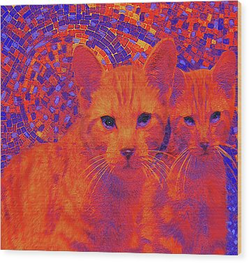 Pop Art Cats Wood Print by Jane Schnetlage