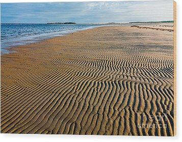 Popham Beach Wood Print by Susan Cole Kelly