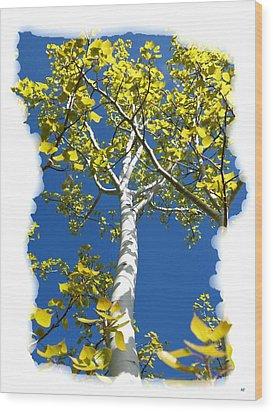 Poplar Tree In Spring  Wood Print by Will Borden