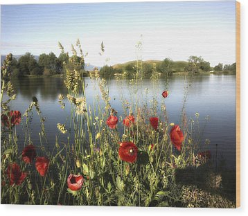 Poppies At Lake Wood Print
