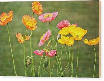 Poppies Blooming Wood Print by Joan Herwig