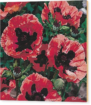 Poppies Wood Print by Cole Black