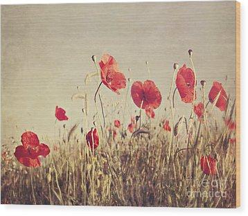 Poppies Wood Print by Diana Kraleva