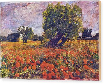Poppies Of Puglia Wood Print by Steven Boone