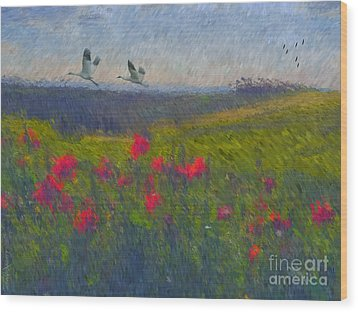 Wood Print featuring the digital art Poppies Of Tuscany by Lianne Schneider