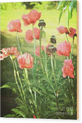 Poppies Wood Print by Rosemary Aubut