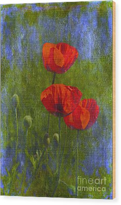 Poppies Wood Print by Veikko Suikkanen