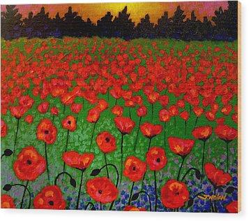 Poppy Carpet  Wood Print by John  Nolan