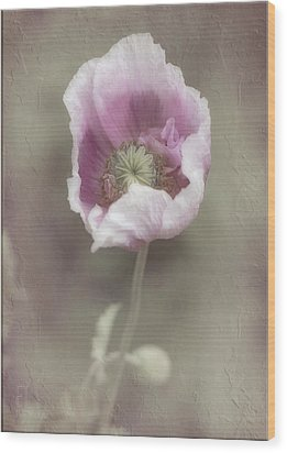 Poppy Wood Print by Elaine Teague