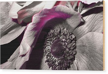 Poppy Eye Wood Print by Sharon Costa