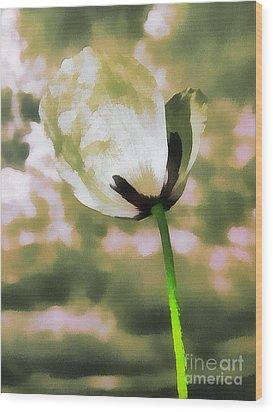 Poppy Flower In The Sky  Wood Print by Odon Czintos