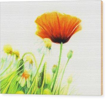 Poppy Flower Wood Print by Natasha Denger