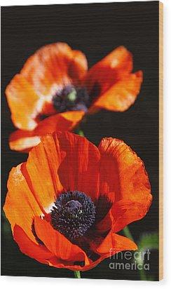 Poppy Flower Pair Wood Print